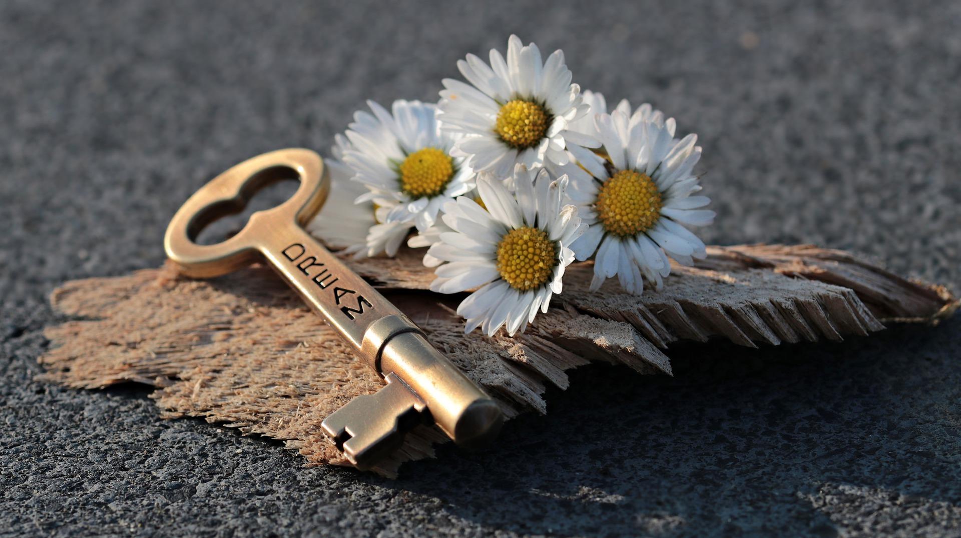 Klucz do szczęścia – VI Niedziela Zwykła