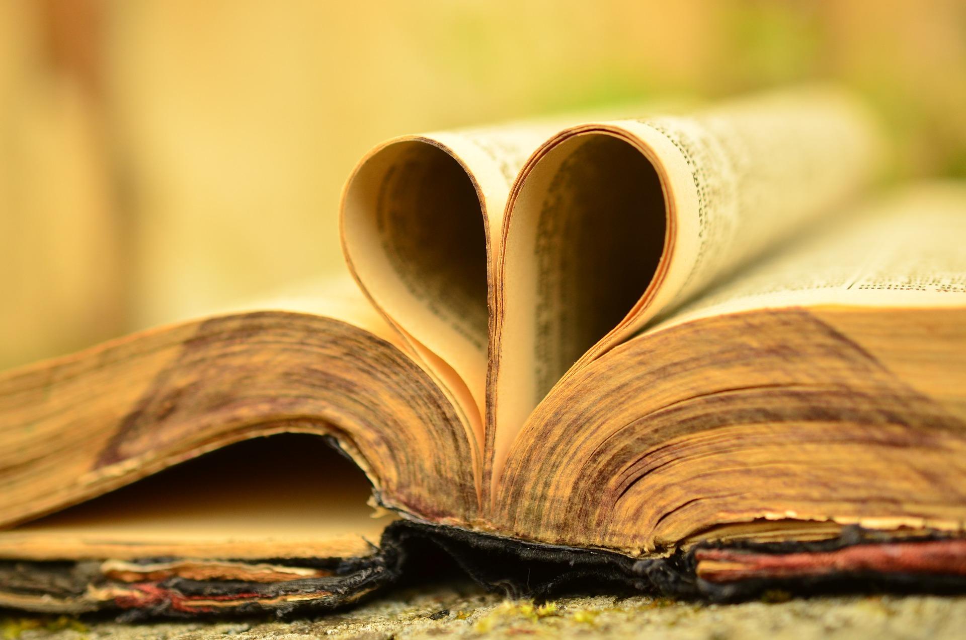 Słowa, które oczyszczają – VIII Niedziela Zwykła