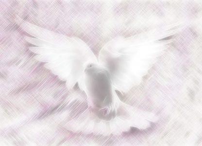 Odziani w szatę Ducha Świętego – Wniebowstąpienie Pańskie
