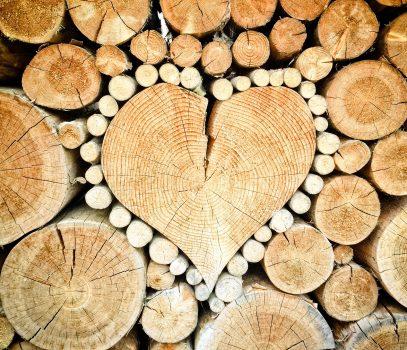 Miłość prawdziwa – XXIII Niedziela Zwykła
