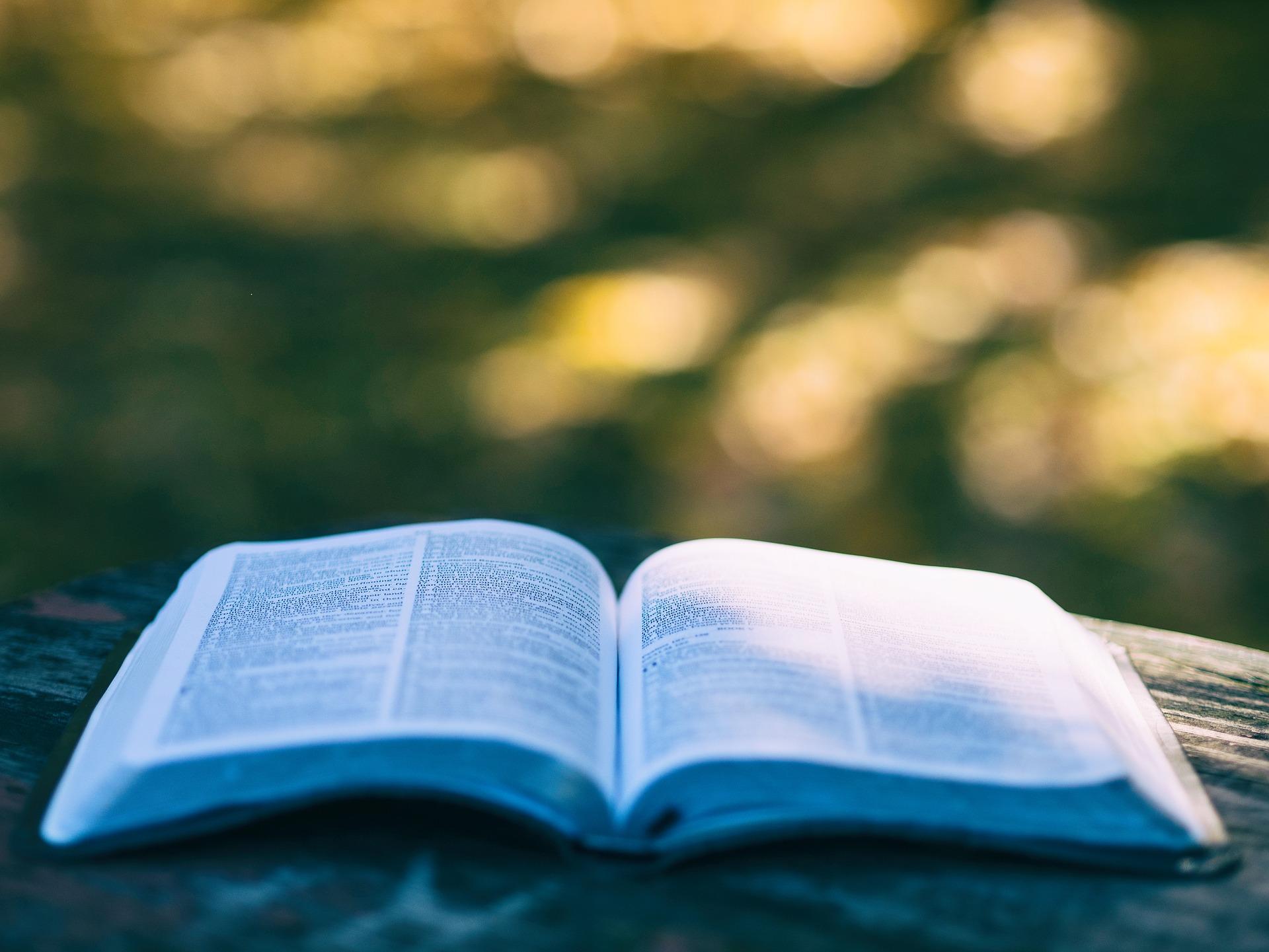 Nie mądrość tego świata – VII Niedziela Zwykła