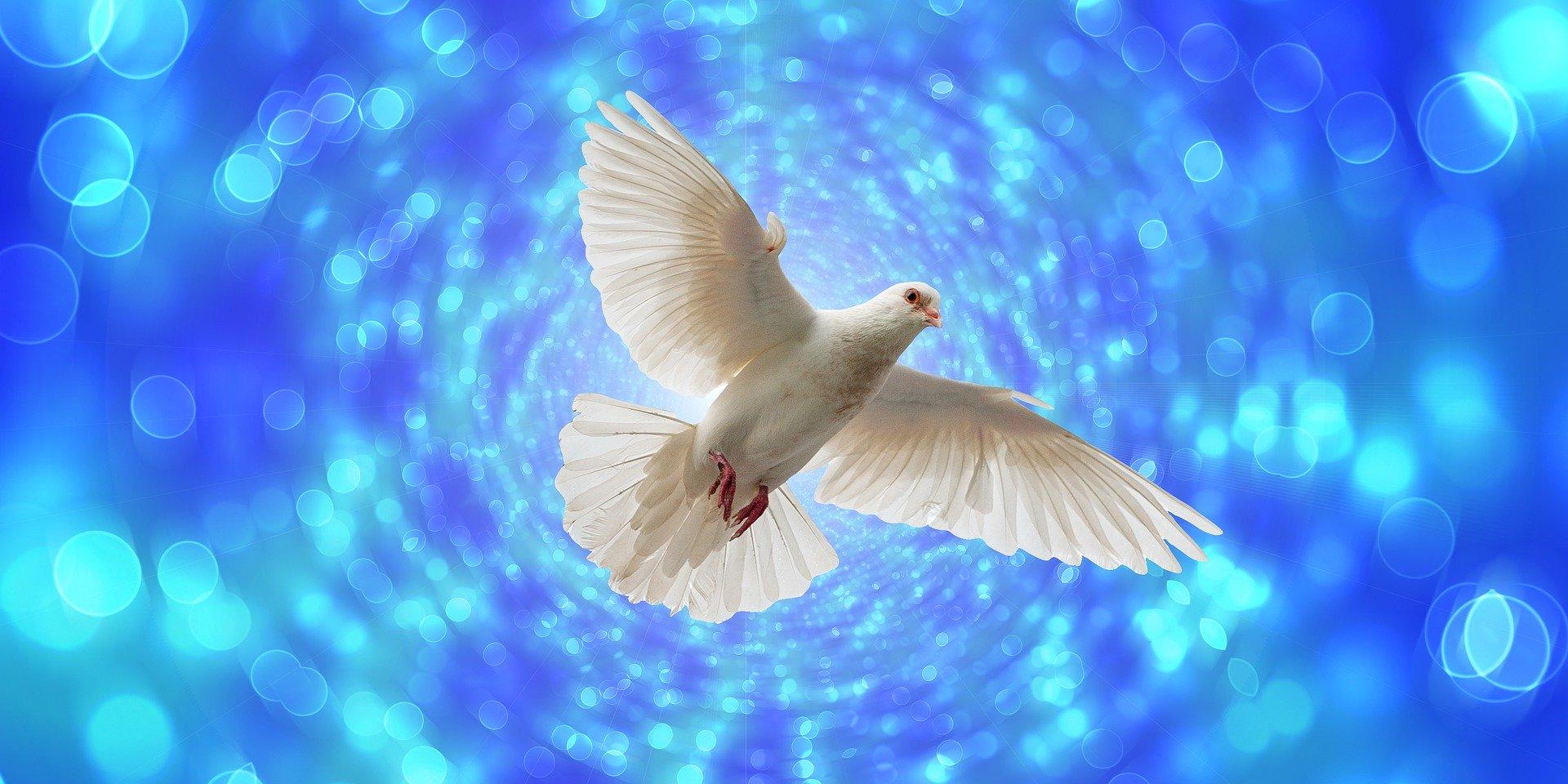 Niedziela Zesłania Ducha Świętego